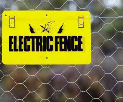 Live Wire Electric Virginia Simple Virginia, Erects Electrified Fence Near School, Stop To Keep Kids, Property,, News Galleries