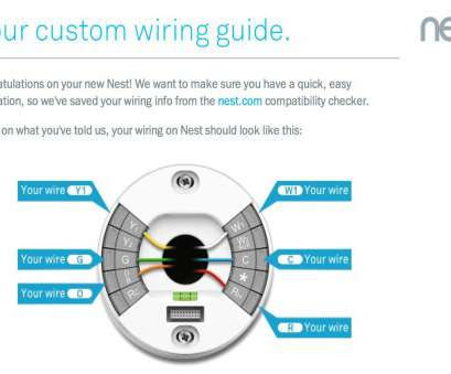 11 Nice Nest Custom Wiring Diagram Photos