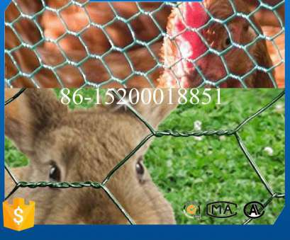pvc coated wire mesh for cages China, Coated Iron Wire Netting, Rabbit Cage Photos Pvc Coated Wire Mesh, Cages Top China, Coated Iron Wire Netting, Rabbit Cage Photos Collections