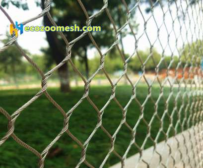 stainless steel wire mesh for aviaries Stainless steel wire rope mesh, specially used, zoo mesh , aviary netting,, enclosure, wire rope mesh, bird netting Stainless Steel Wire Mesh, Aviaries Creative Stainless Steel Wire Rope Mesh, Specially Used, Zoo Mesh , Aviary Netting,, Enclosure, Wire Rope Mesh, Bird Netting Images