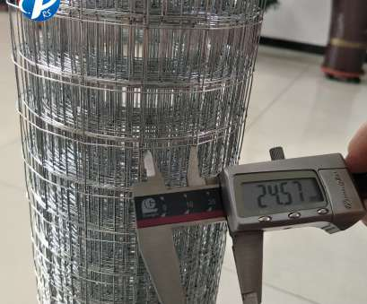 stainless steel wire mesh in sri lanka China, Lanka, Coated Welded Wire Mesh, China, Lanka, Coated Welded Wire Mesh Manufacturers, Suppliers on Alibaba.com Stainless Steel Wire Mesh In, Lanka Perfect China, Lanka, Coated Welded Wire Mesh, China, Lanka, Coated Welded Wire Mesh Manufacturers, Suppliers On Alibaba.Com Ideas