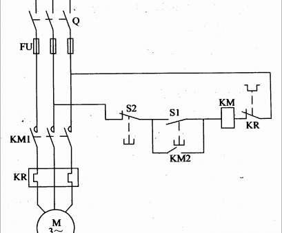 8 Professional Starter Circuit Wiring Diagram Collections