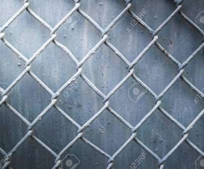 20 Popular Steel Wire Mesh Fence Pictures
