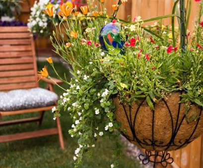 Wire Mesh Baskets, Plants Best How To Plant Hanging Baskets, HGTV Ideas