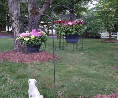Wire Mesh Baskets, Plants Practical Two More Hanging Wire Mesh Baskets Covering Planters Protecting Them From Deer. Proven To Stop Ideas
