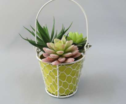 Wire Mesh Baskets, Plants Perfect Wholesale Powder Coated Round Wire Mesh Baskets With Handle Bamboo Fiber Plant Fiber Flower, ECO Solutions