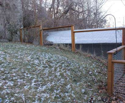 wire mesh fence for dogs carpentry Wire Mesh Fencing, Dogs mplswoodworkers, fence pinterest rhpinterestcom ideas about my inspiration on Wire Mesh Fence, Dogs Top Carpentry Wire Mesh Fencing, Dogs Mplswoodworkers, Fence Pinterest Rhpinterestcom Ideas About My Inspiration On Pictures
