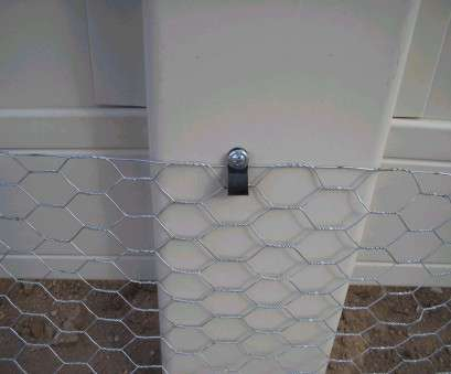 wire mesh fence how to install Chicken wire attached to chain link fence, existing wooden fencing, bottom fence board Wire Mesh Fence, To Install Popular Chicken Wire Attached To Chain Link Fence, Existing Wooden Fencing, Bottom Fence Board Images