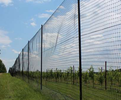 10 Cleaver Wire Mesh Fencing Ebay Solutions