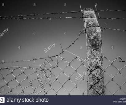 wire mesh fencing nottingham Wire Netting Fence Stock Photos & Wire Netting Fence Stock Images Wire Mesh Fencing Nottingham Best Wire Netting Fence Stock Photos & Wire Netting Fence Stock Images Photos