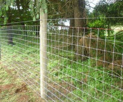 17 New Wire Mesh Goat Fence Galleries