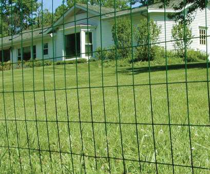 wire mesh on vinyl fence Amazon.com : Fencer Wire 16 Gauge Green Vinyl Coated Welded Wire Mesh Size 2 inch, inch (3, x 50 ft.) : Outdoor Decorative Fences : Garden & Outdoor Wire Mesh On Vinyl Fence Cleaver Amazon.Com : Fencer Wire 16 Gauge Green Vinyl Coated Welded Wire Mesh Size 2 Inch, Inch (3, X 50 Ft.) : Outdoor Decorative Fences : Garden & Outdoor Collections