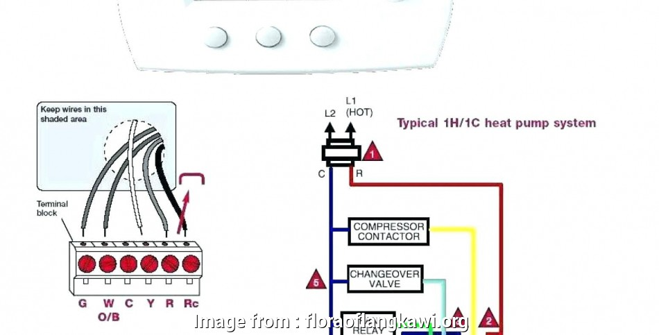 Typical Thermostat Wiring Diagram Cleaver Perfect Typical