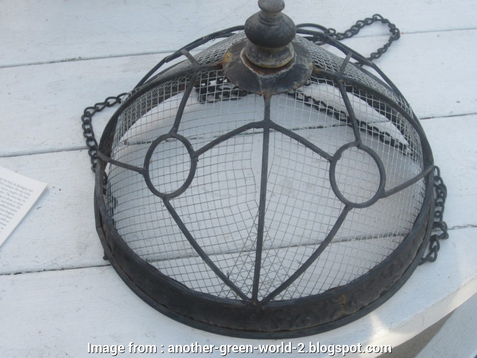 wire mesh baskets for plants Another Green World: Hanging Baskets with Succulents Wire Mesh Baskets, Plants Popular Another Green World: Hanging Baskets With Succulents Solutions