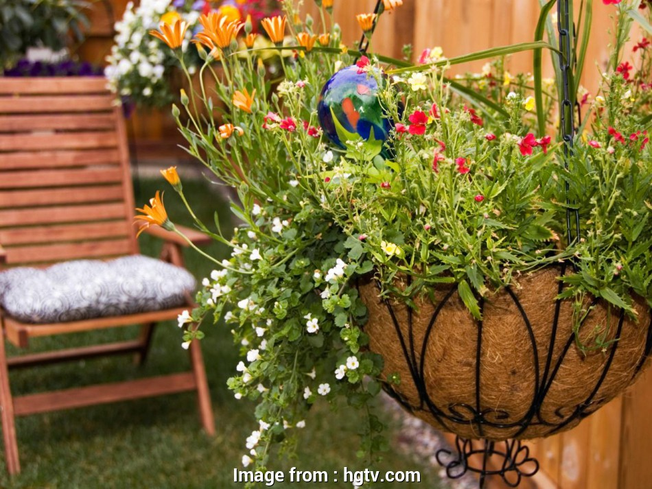 wire mesh baskets for plants How to Plant Hanging Baskets, HGTV Wire Mesh Baskets, Plants Best How To Plant Hanging Baskets, HGTV Ideas