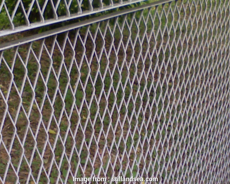 wire mesh fence design Great Wire Mesh Fencing Ideas, Home & Garden :, To Install 11 Best Wire Mesh Fence Design Solutions