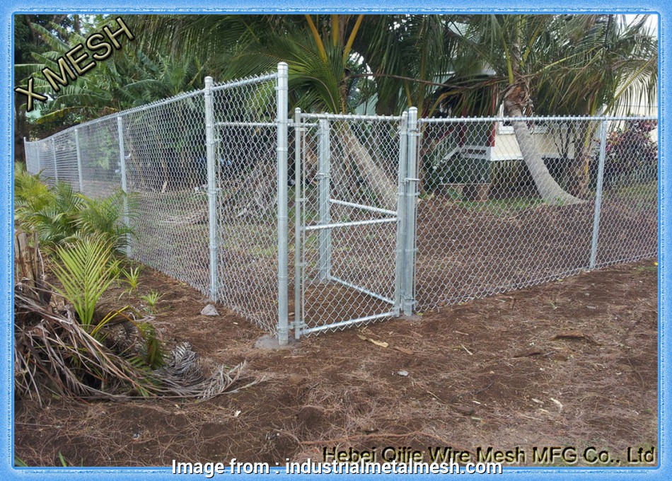 wire mesh fence suppliers Galvanized Chain Link Fence Privacy Fabric / Mesh Fabric High Carbon Steel Wire Wire Mesh Fence Suppliers Perfect Galvanized Chain Link Fence Privacy Fabric / Mesh Fabric High Carbon Steel Wire Galleries