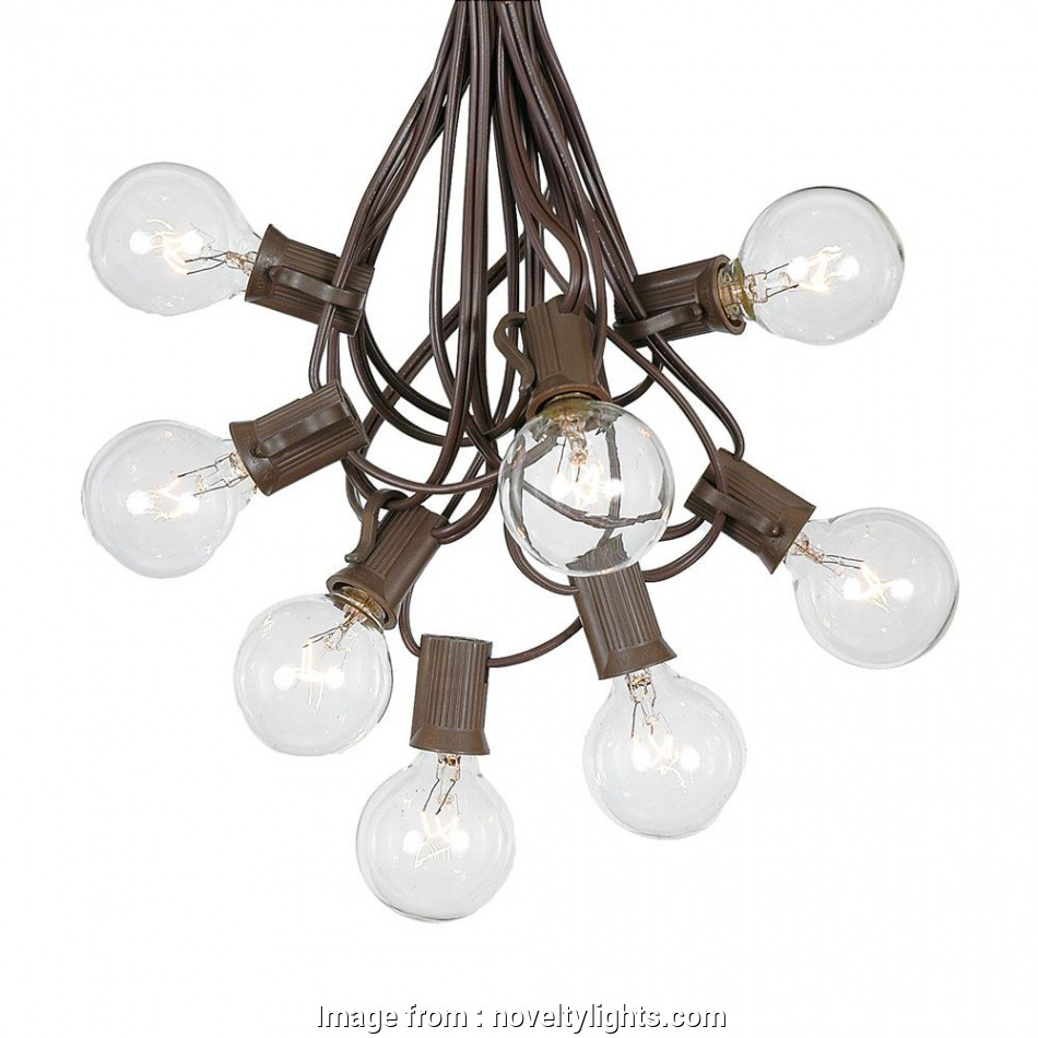 Wiring A Light Bulb Fixture Nice Picture Of  G40 Globe