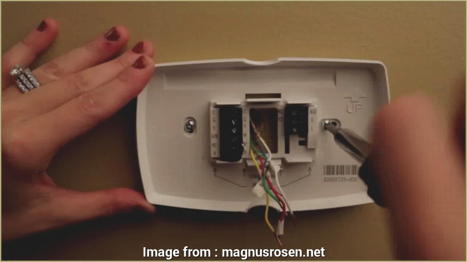 Honeywell Thermostat Rth2310B Wiring Diagram from tonetastic.info